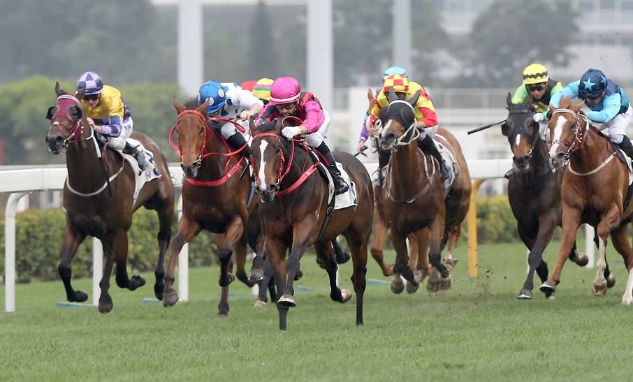 SUN 17 MAR 2019 – SHA TIN